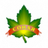 sonaya_logo_header
